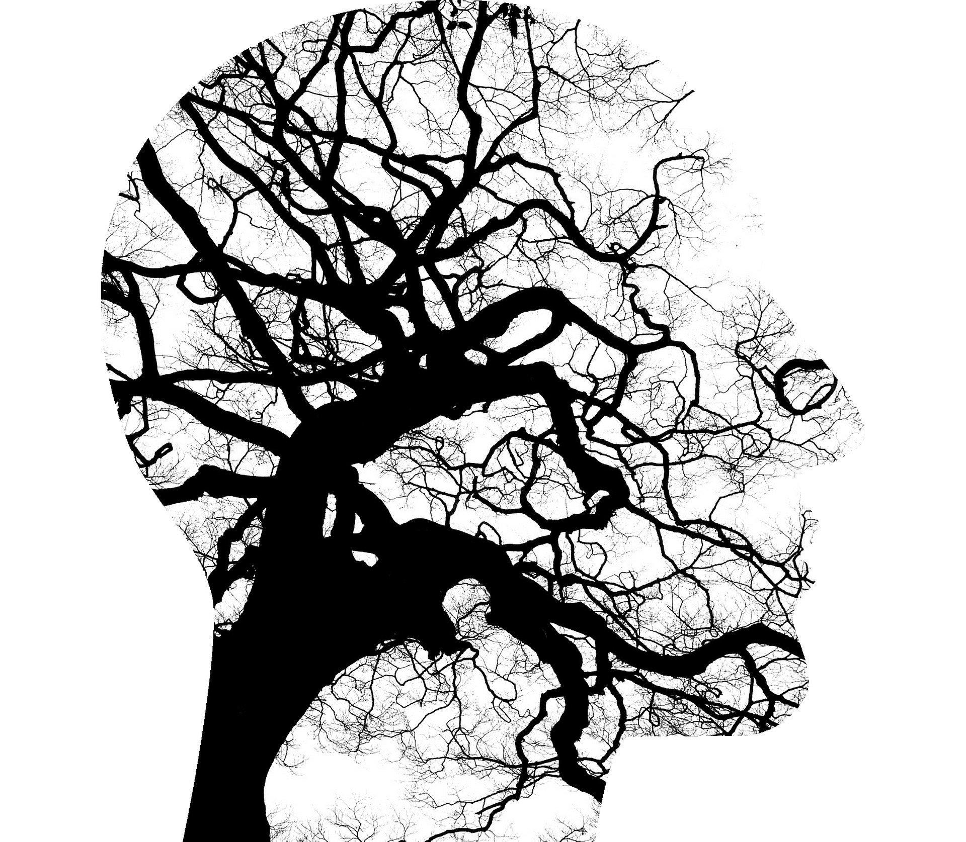 psicologo - tipologie